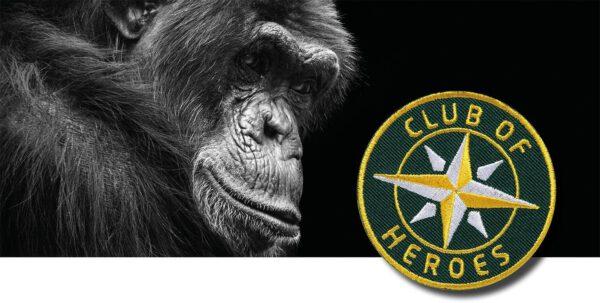 Artenschutz Umwelt Natur / Save the Planet / gestickte Aufnäher Patches und Bügelflicken zum Aufnähen oder Aufbügeln von Club-of-Heroes